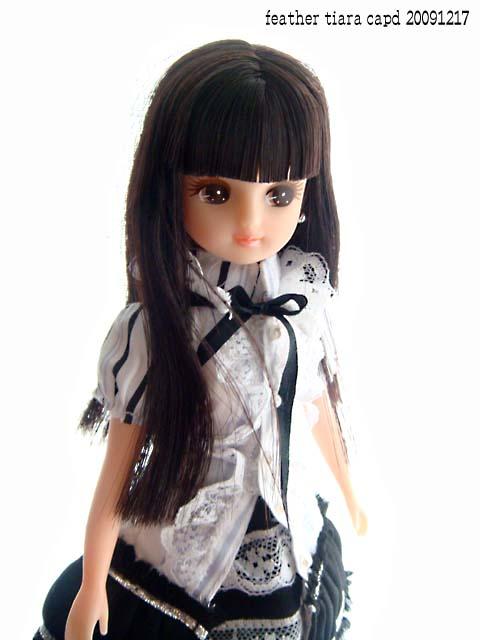 20091217capd-licca2